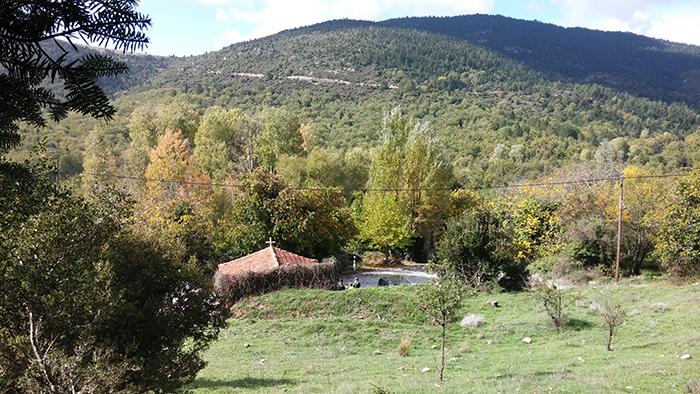 The Village2